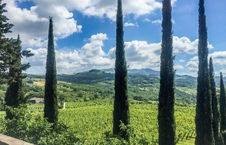 Paolo-Conterno-Toscana-Ortaglia-07-1500