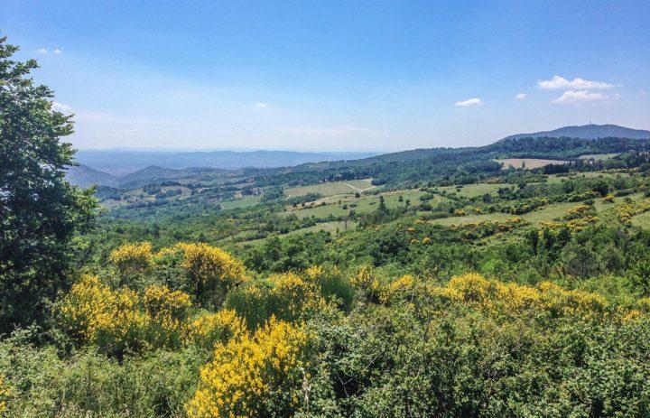Paolo-Conterno-Toscana-Ortaglia-13-1500